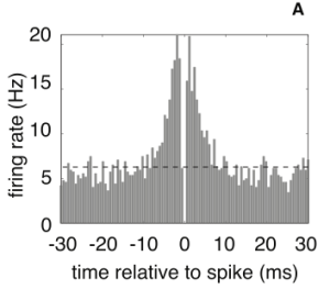 Pillow13_PLoSONE_SpikeSorting_xcfig