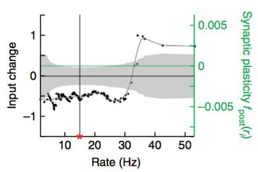 Fig2g_synapticplasticityrule